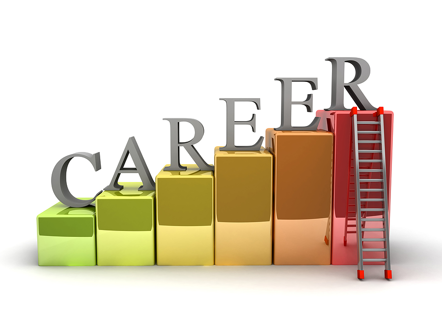What makes a Great Career?